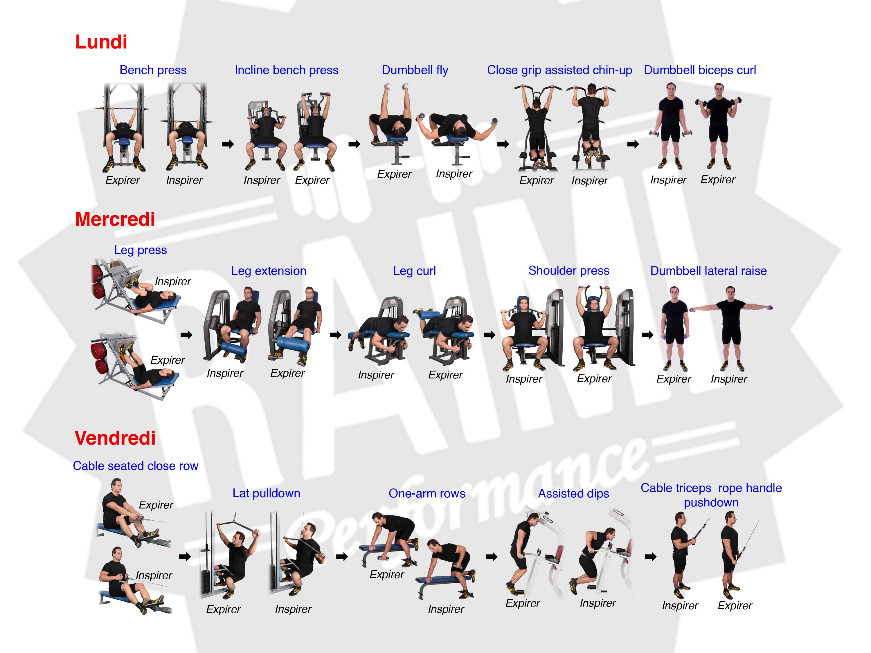 Entra nement pour augmenter la masse musculaire for Musculation volume